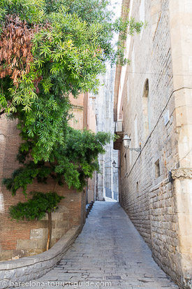 Charming streets near the Barcelona Cathedral