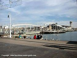 barcelona cruisehaventerminal op port vell