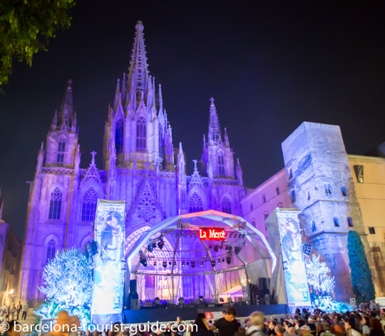 Barcelona Cathedral night illumination