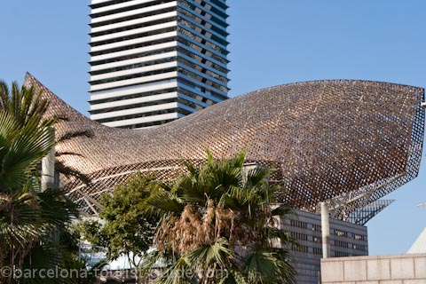 Frank Gehry Pexi (Golden Fish in Barcelonea)