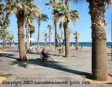 Click to see pictures of Barceloneta beach.